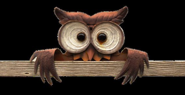 Owl-640